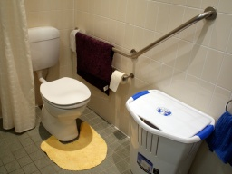 Dementia Care: Problems with Toileting